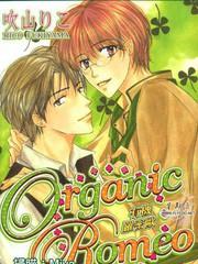 Organic Romeo有机罗密